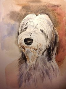 Aquarell Bearded Collie, Tiere, Hund
