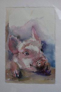 Aquarell Schweinchen, Tiere