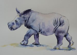 Papiertest Britannia satiniert Hahnemühle Nashornbaby Kibo Augsburg Tiere