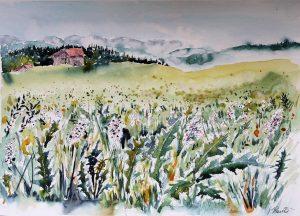 Papiertest Britannia satiniert Hahnemühle Landschaft Allgäu