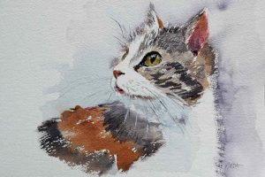 Aquarell mit Katze auf rauem Papier