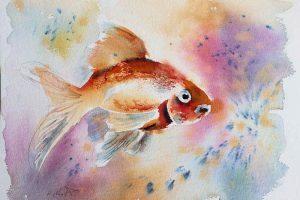 Aquarell Schleierfisch auf Hahnemühle Leonardo rau