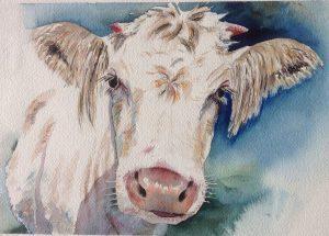 Eine weiße in Kuh in Aquarell, farbiger Hintergrund