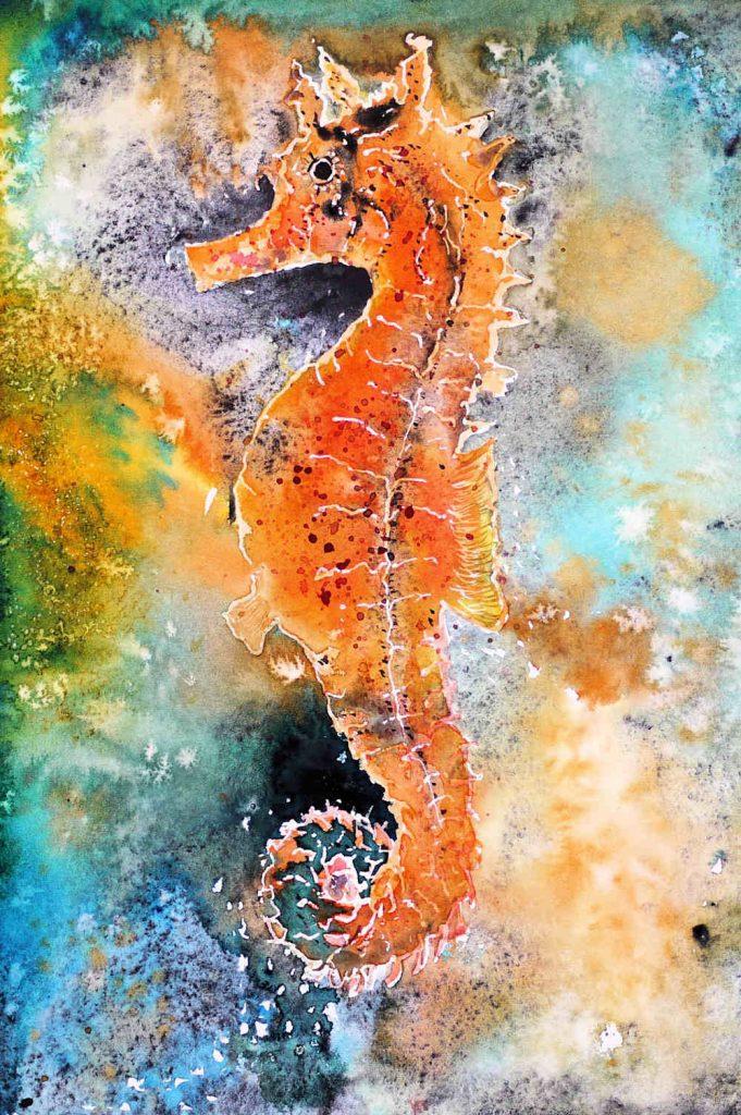 Aquarell oranges Seepferdchen auf Hahnemühle Leonardo satiniert