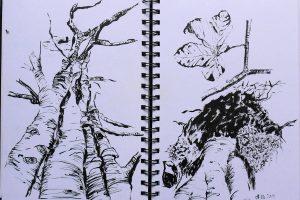 Schwarz-weiß Skizze mit Brush-Pen von Pentel im Skizzenbuch Stillman & Birn, Beta.