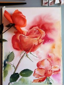 Orange Rose als Aquarell mit Rose als Vorlage