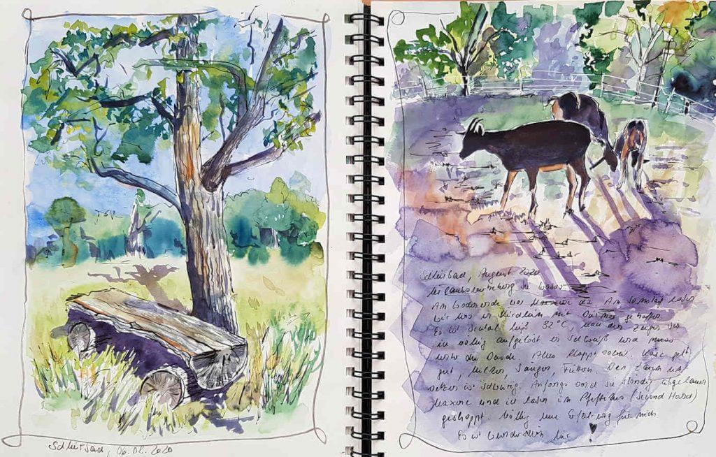 Aquarellskizzen von Bank, Gras, Baum und Ziegen mit Schrift